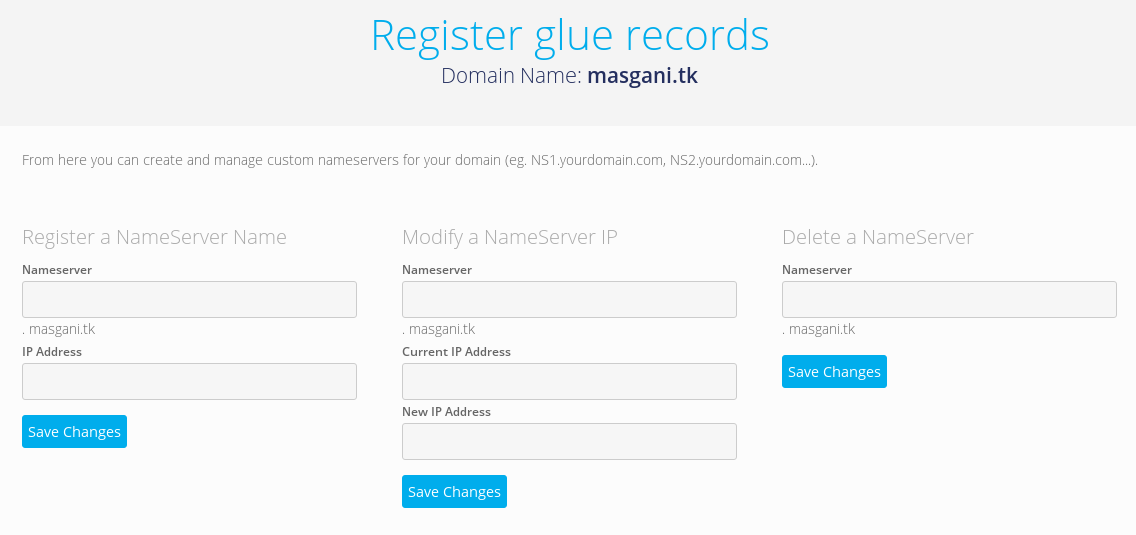 Register glue records atau nameserver